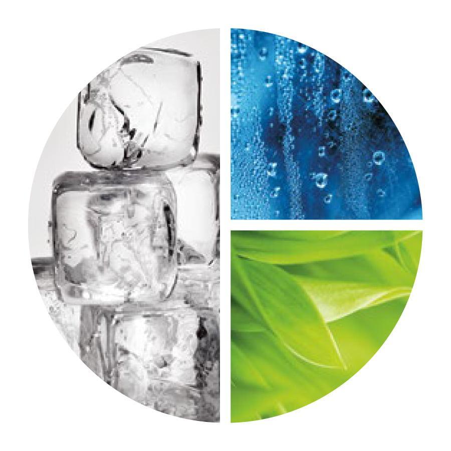 Aquafolia - Aqua Secours
