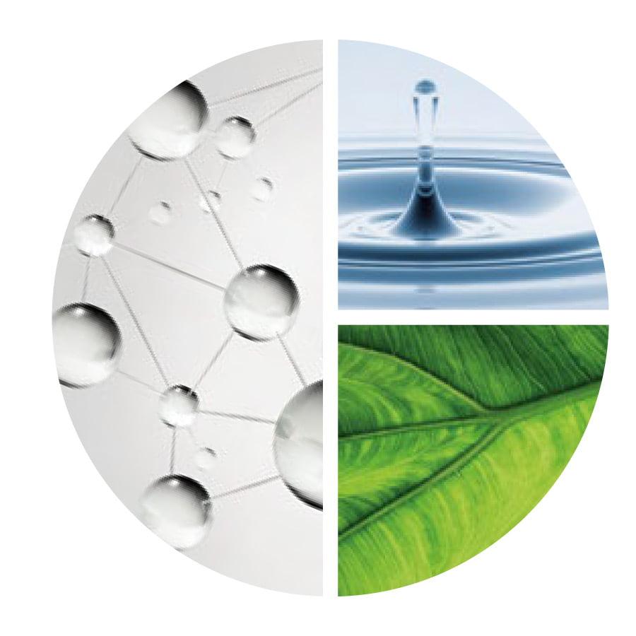 Aquafolia - AquaUNDE